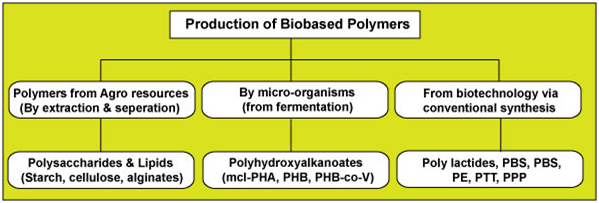 Biobased Polymers Trends