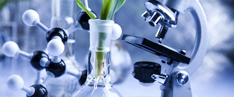 Biodegradable Pha Bioplastics News
