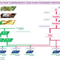 Bio-Based Polyamides
