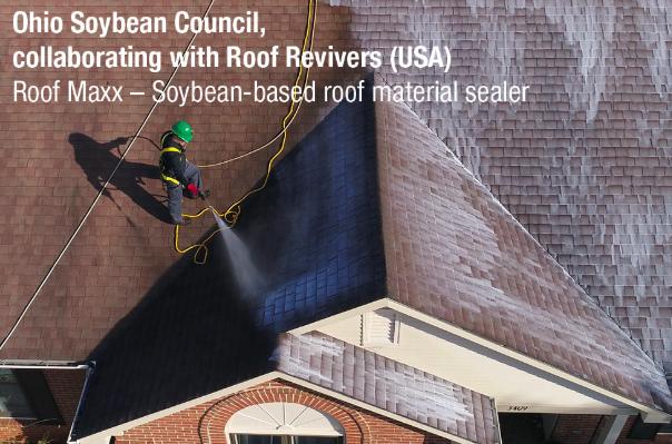 roofmaxx
